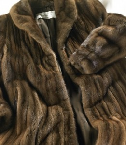 Washington DC, Virginia and Maryland fur cleaning and storage